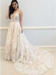 Elegant A-Line V Neck Light Champagne Tulle Lace Wedding Dresses with Train