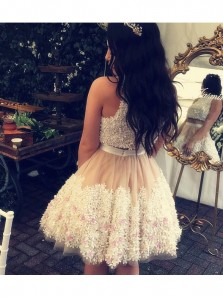 Cute Tulle Lace Homecoming Dresses,Two Piece Quinceanera Dresses