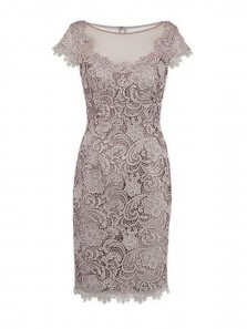 Sheath Scoop Open Back Cap Sleeves Grey Lace Mother of The Bride Dress Below the Knee