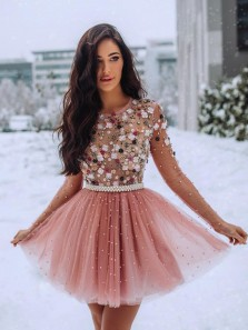 Princess A-Line Round Neck Long Sleeve Blush Tulle Short Homecoming Dresses,Flower Appliques Short Prom Dresses