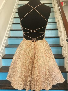 Chic A-Line Spaghetti Straps Cross Back Champagne Lace Short Homecoming Dresses,Formal Party Dresses