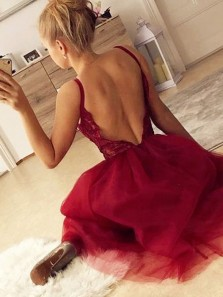 Cute A-Line V Neck Backless Burgundy Tulle Short Prom Dresses,Cocktail Party Dresses Homecoming Dresses DG0331006