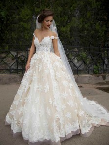 Ball Gown Sheer Neck Cap Sleeves Light Champagne Tulle Wedding Dresses with Lace Appliques