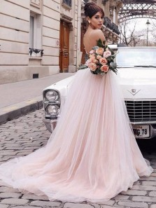 Charming Deep V Neck Backless Spaghetti Straps Fairy Champagne/ Pink Tulle Wedding Dress with Applique