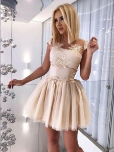 Cute A-Line Cap Sleeve Backless Light Champagne Tulle Short Homecoming Dresses with Appliques