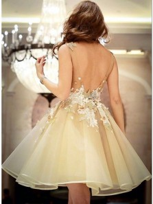 Cute A Line V Neck Organza Open Back Homecoming Dresses With Applique Lace