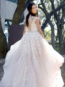Light Champagne Tulle Long Formal Prom Dresses with Appliques