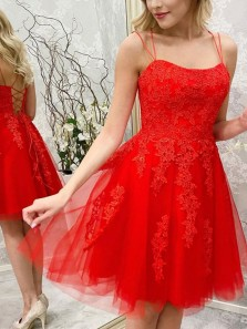 Pretty A-Line Scoop Neck Cross Back Short Prom Evening Dresses,Lace Appliques Homecoming Dresses